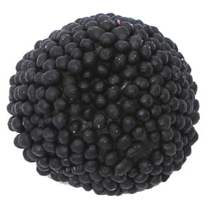 bonbon mure noire fini
